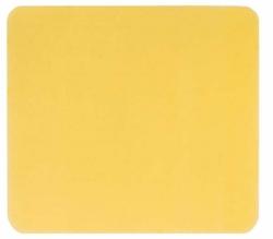 Algoplaque 10X10Cm - (10 St) - PZN 04170408